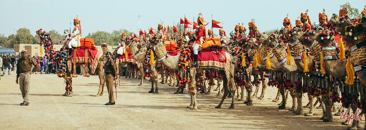 desert festival jaisalmer, rajasthan