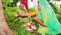 Navakhani and Cherta Festivals in Chhattisgarh