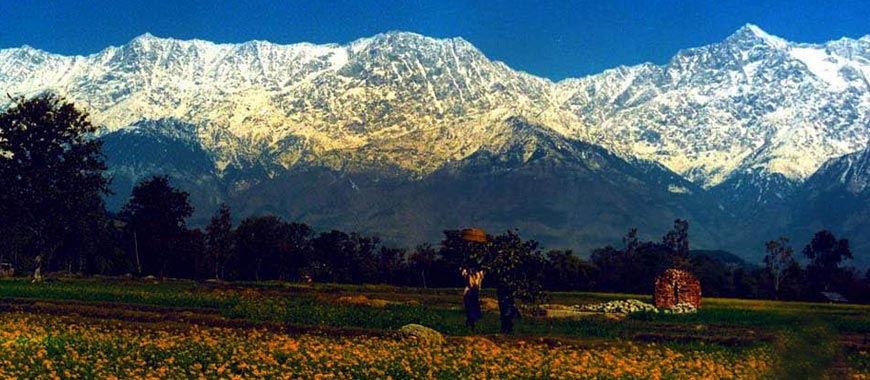Kangra Travel Guide Kangra Tour In Himachal Pradesh