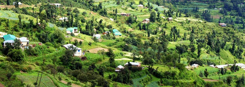 sutlej valley in chail